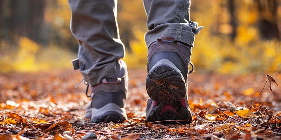 Wander- und Trekkingschuhe für die ganze Familie von Top Marken