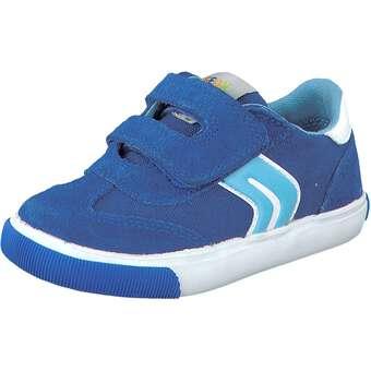Geox Sneaker Kiwi