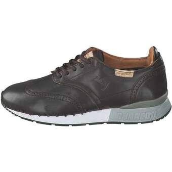 Collybird Sneaker