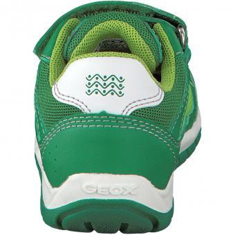 Geox Sneaker Shaax